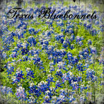 Scrapbook Customs - United States Collection - Texas - 12 x 12 Paper - Bluebonnets