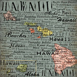 Scrapbook Customs - United States Collection - Hawaii - 12 x 12 Paper - Map