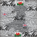 Scrapbook Customs - World Collection - Wales - 12 x 12 Paper - Scratchy