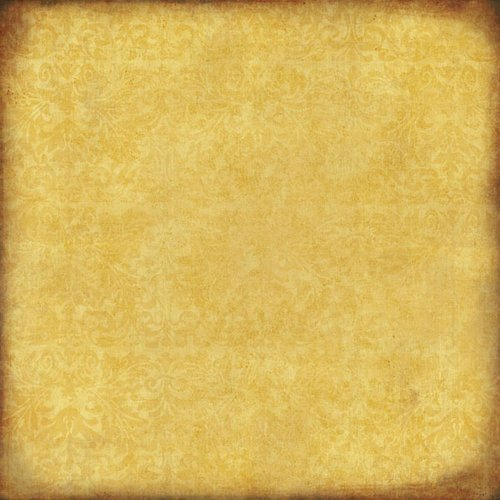Scrapbook Customs - Travel Collection - 12 x 12 Paper - State Chic - Gold