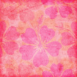 Scrapbook Customs - Travel Collection - 12 x 12 Paper - Paradise - Pink Hibiscus