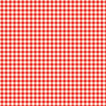 Scrapbook Customs - 12 x 12 Paper - Picnic Small Checked Plaid