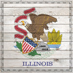 Scrapbook Customs - State Sightseeing Collection - 12 x 12 Paper - Wood Flag - Illinois