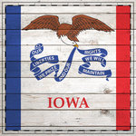 Scrapbook Customs - State Sightseeing Collection - 12 x 12 Paper - Wood Flag - Iowa