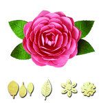 Spellbinders - Shapeabilities Collection - D-Lites Die - Camellia