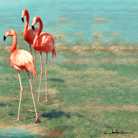SugarTree - 12 x 12 Paper - Flamingos