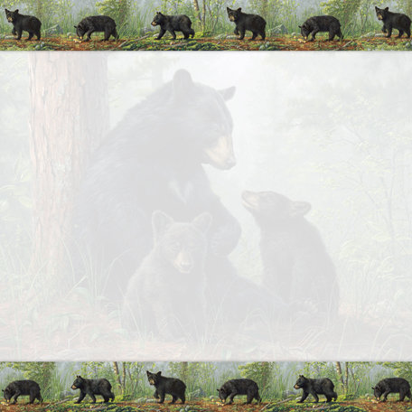 SugarTree - 12 x 12 Paper - Black Bear Trouble