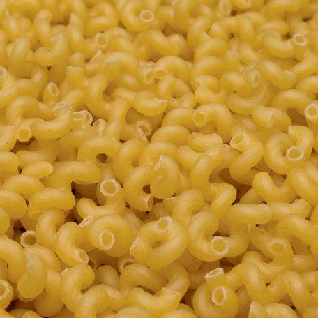 SugarTree - 12 x 12 Paper - Macaroni