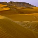 SugarTree - 12 x 12 Paper - Desert Dunes