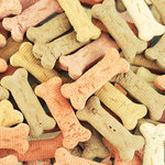 SugarTree - 12 x 12 Paper - Dog Treats