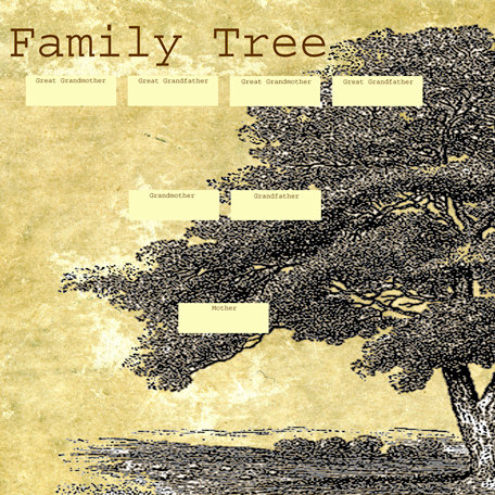 SugarTree - 12 x 12 Paper - Family Tree Left