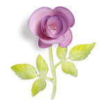 Sizzix - Botanical Sanctuary Collection -Sizzlits Die - Large - Flower, 3-D and Vine