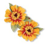 Sizzix - Susans Garden Collection - Thinlits Die - Flower, Zinnia