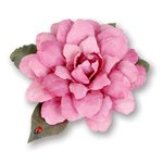 Sizzix - Susan's Garden Collection - Thinlits Die - Flower, Camellia