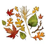 Sizzix - Tim Holtz - Alterations Collection - Halloween - Thinlits Die - Fall Foliage