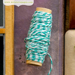 Websters Pages - Quick Picks Collection - Designer Trim - Teal Bakers Twine - 1 Yard
