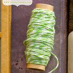 Websters Pages - Quick Picks Collection - Designer Trim - Green Bakers Twine - 1 Yard