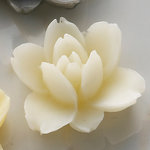Websters Pages - Whimsies - Resin Embellishment Pieces - Lotus Flower Blooms - Ivory