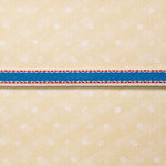 Websters Pages - Designer Ribbon - Racing Lines - 25 Yards
