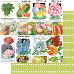 Websters Pages - Strawberry Fields Collection - 12 x 12 Double Sided Paper - Grow with Me
