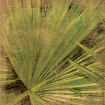 Wubie Prints - Weathered Tropical Traveler Collection - 12x12 Paper - Weathered Palm Leaf - Beach - Vacation, BRAND NEW