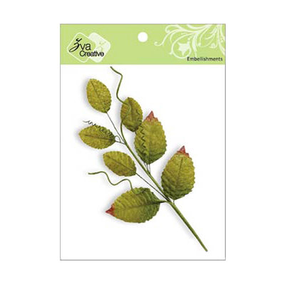 Zva Creative - Arboretums Collection - Branch with Leaves