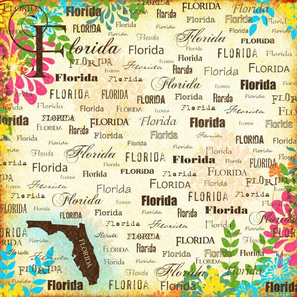 Florida essay