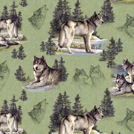 grey wolves essay Free essay: this report is all about the gray wolf its scientific name is canis  lupis canis is the latin word for dog the genus also includes jackals and.